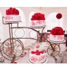 Pastel bicicleta bordado